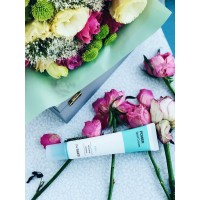 The Saem Power Spot Cream PHA 40ml
