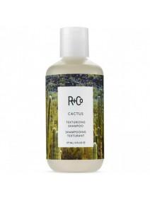 R+Co Cactus Texturizing Shampoo 177ml